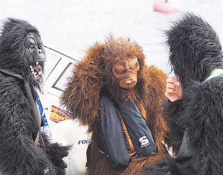Kimi Raikkonen, o Gorila-Kimi