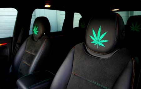Porsche Cayenne Cannabis