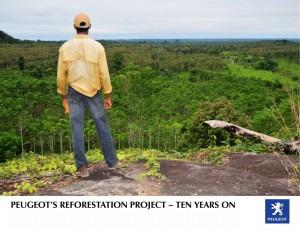 Peugeot reforestación