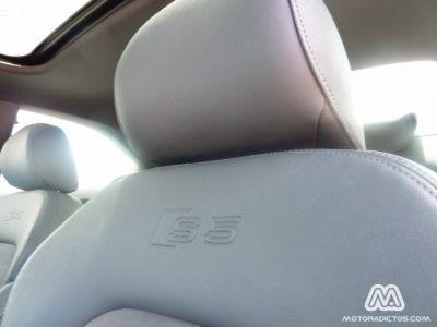 Audi-S5-MotorAdictos (16)