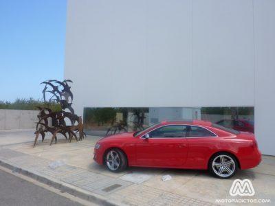 Audi-S5-MotorAdictos (3)