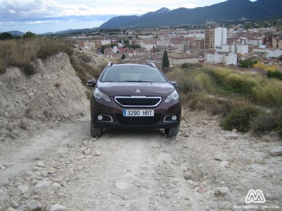 Peugeot2008_4353_wt