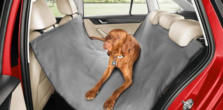 Skoda protege a tu perro con estilo en los asientos traseros 2