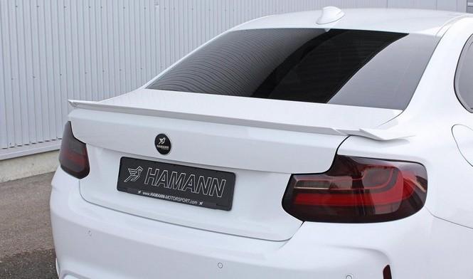 BMW M2 Hamann: 420 CV y unas llantas muy llamativas (entre otros) 2